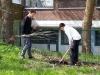 Knickholzpflanzung